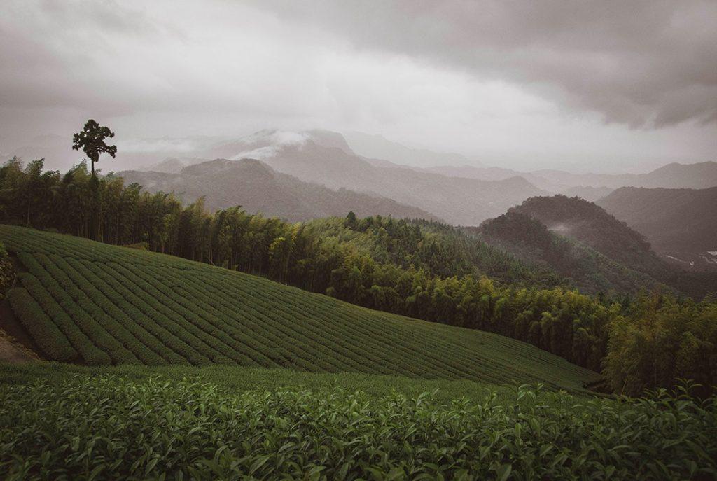 Un paysage de montagne à Taïwan
